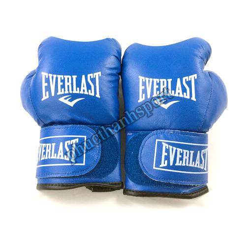 Găng đấm boxing Everlast 10oz (xanh)
